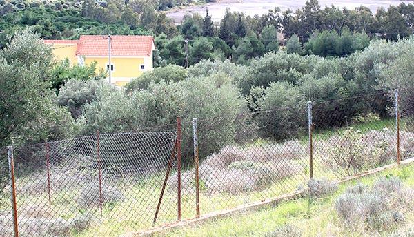 Γιάννενα: Τσουχτερά πρόστιμα για τα άκοπα αγριόχορτα μέσα σε οικόπεδα!