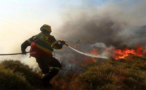 Άρτα: Ενημερωτικές συναντήσεις για την πρόληψη των πυρκαγιών
